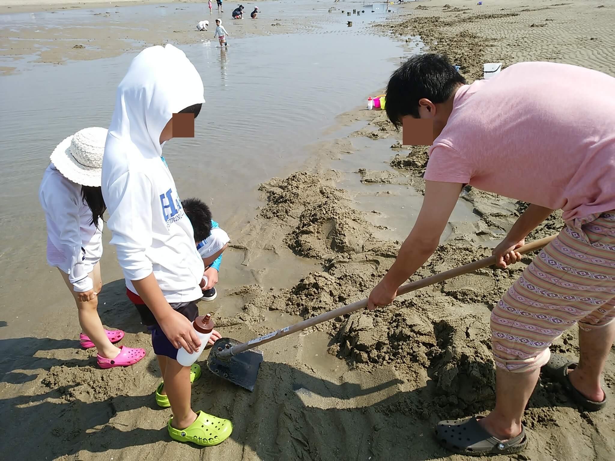 マテ貝を探すために農具で砂の表面を削る