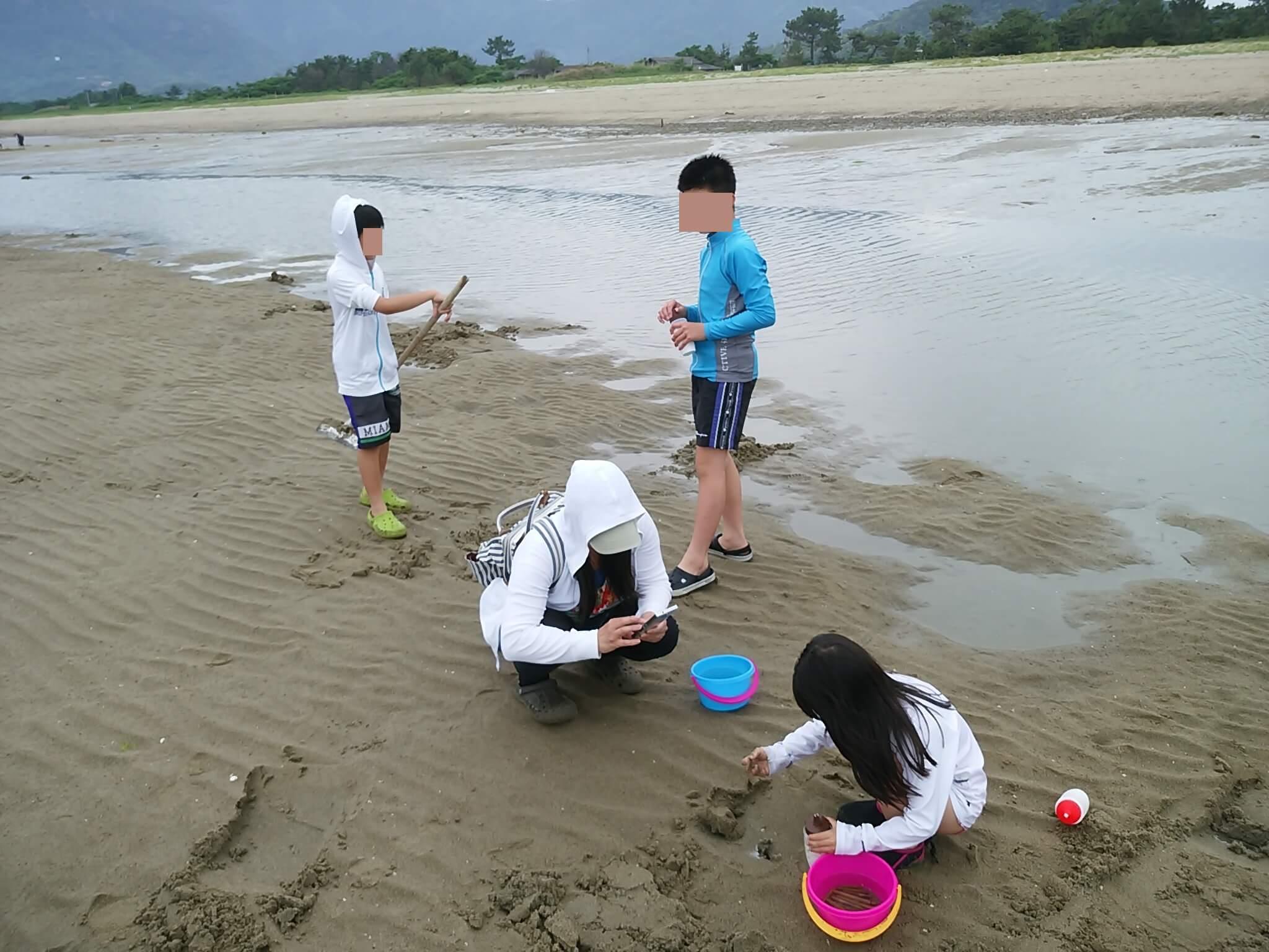 砂浜の潮だまり側にマテ貝が大量に潜んでいる