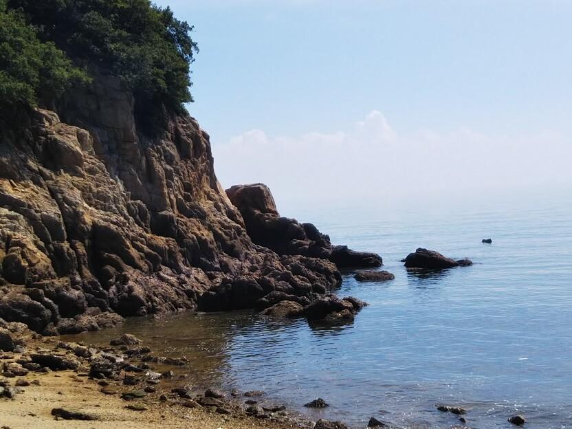 サザエやウニがいる岩場や磯