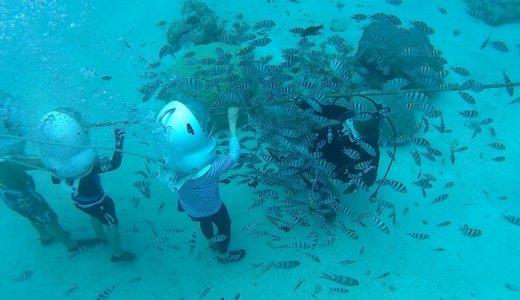 グアムココス島のココスアイランドリゾートで南国を満喫