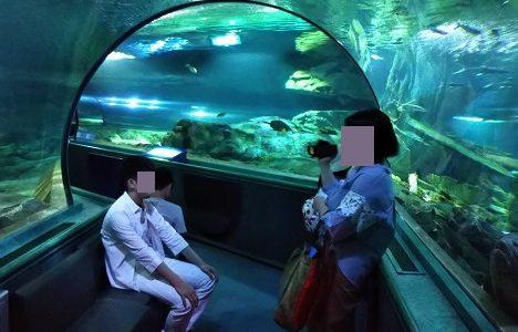 アンダーウォーターワールド グアムのトンネル水族館