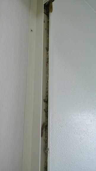 お風呂のドアを外したところ